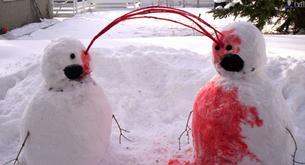 Sobrevivir a la nieve