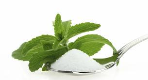 ¿Qué es la stevia?