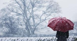 Cómo sobrellevar el invierno (Parte II)